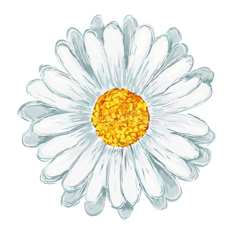 Daisy stock illustratie