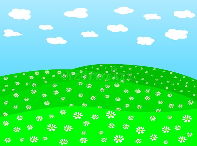 daisy 2 pole wektora ilustracji