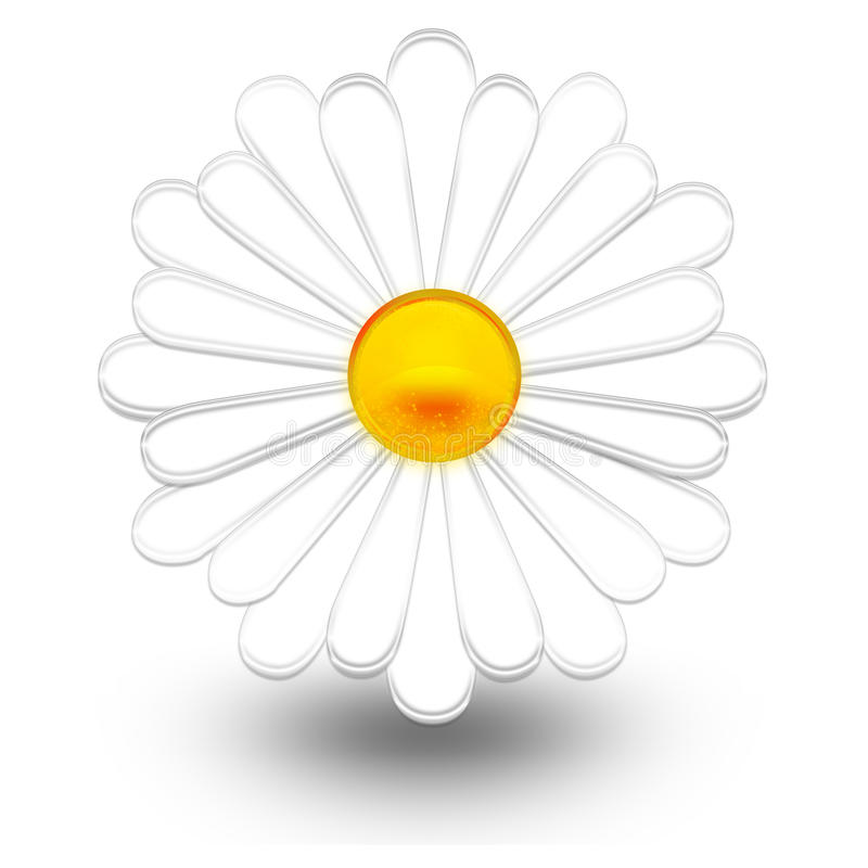 Download Daisy stock illustration. Image of nature, spring, isolated - 9419224