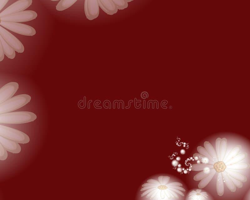 Daisy Background   vector illustratie