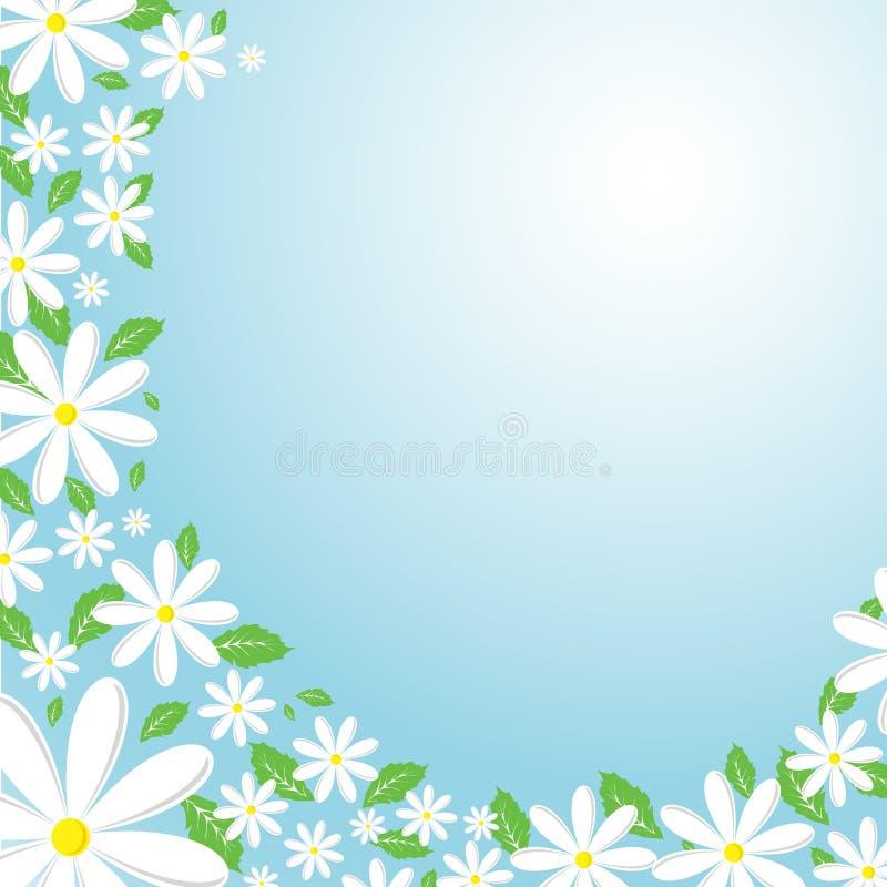 Daisy background royalty free illustration