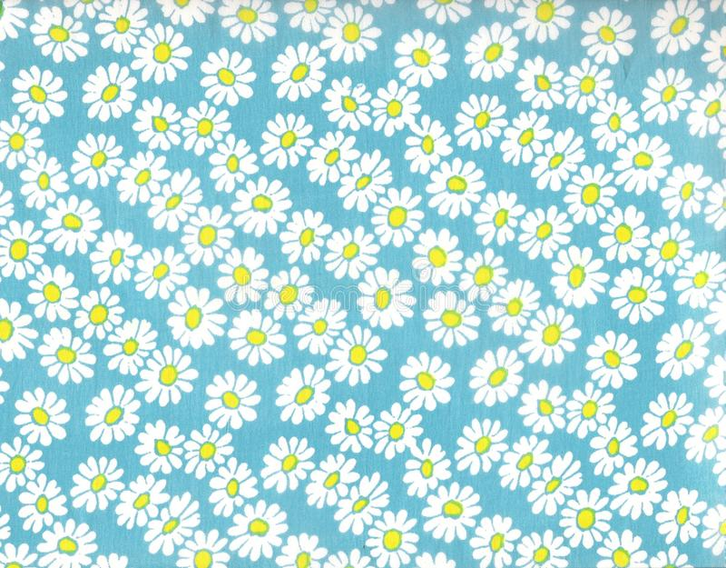 Daisy background. stock images