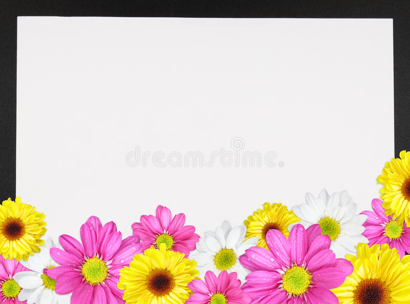 Download Daisy Border 2 stock image. Image of note, copy, spring - 18689377