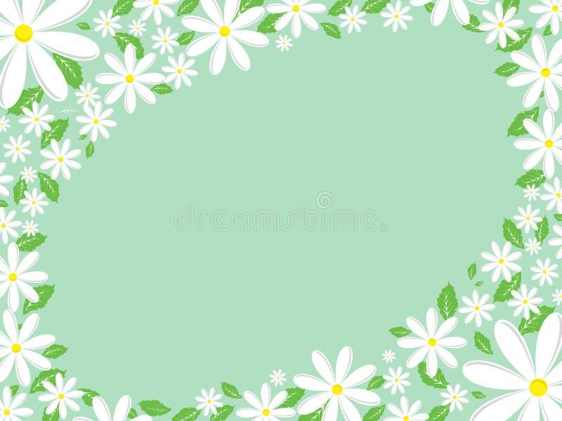 Daisy border vector illustration