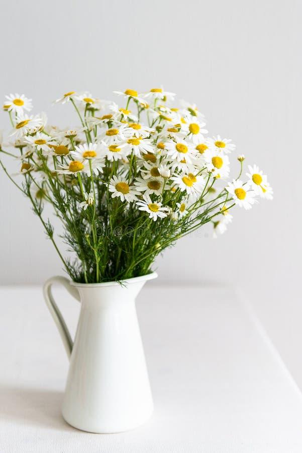 Daisy chamomile bouquet nel vaso bianco Visualizzazione laterale con spazio di copia Stile paese fotografia stock libera da diritti