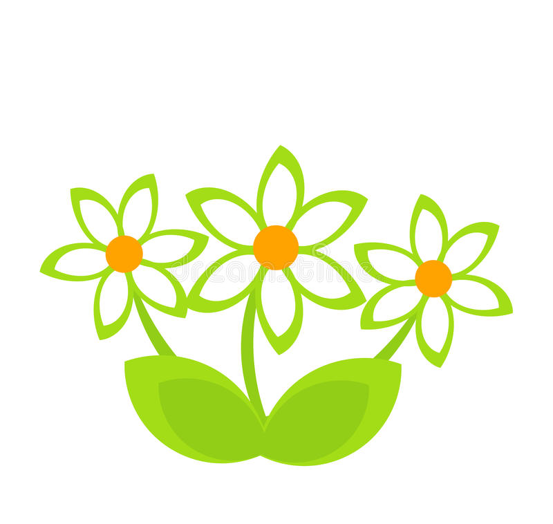Download Daisy clump stock vector. Illustration of nature, grow - 28953635
