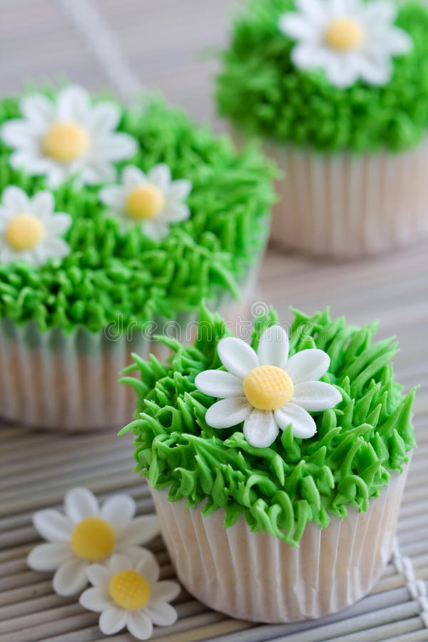 Free Daisy Cupcakes Royalty Free Stock Photos - 12591308