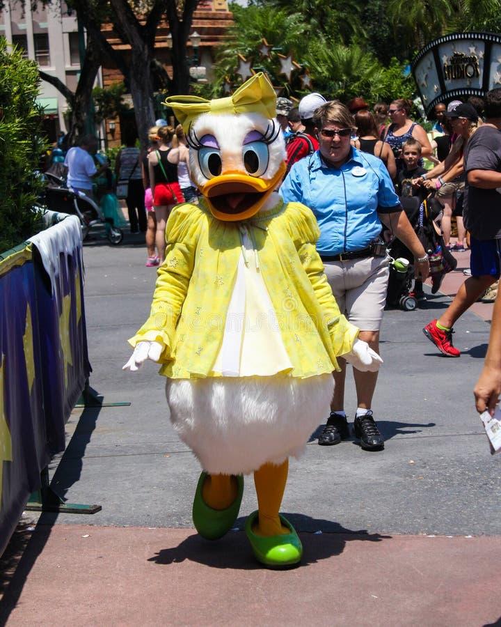 Daisy Duck fotografering för bildbyråer