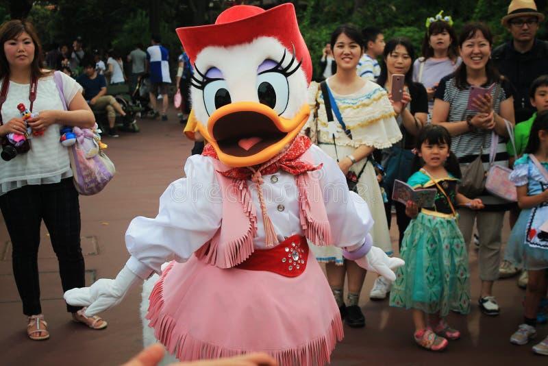 Daisy Duck foto de archivo libre de regalías