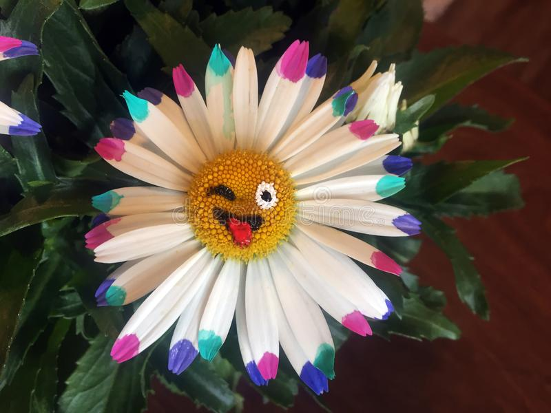 Daisy emoji. Hand painted Daisy emoji . These guys are fun loving little flowers royalty free stock photography