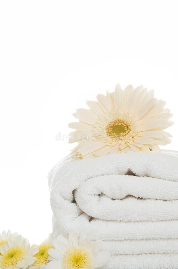 Daisy en handdoek stock foto's