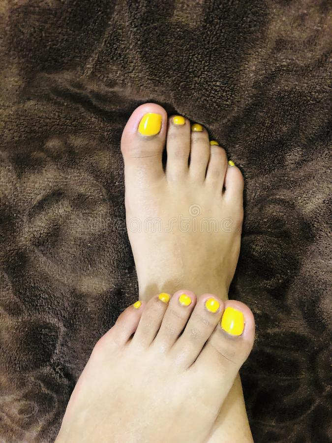 Daisy Feet royalty-vrije stock afbeeldingen