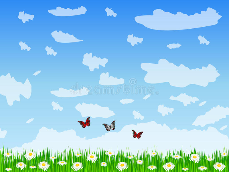 Download Daisy field stock vector. Illustration of spring, flower - 24552382