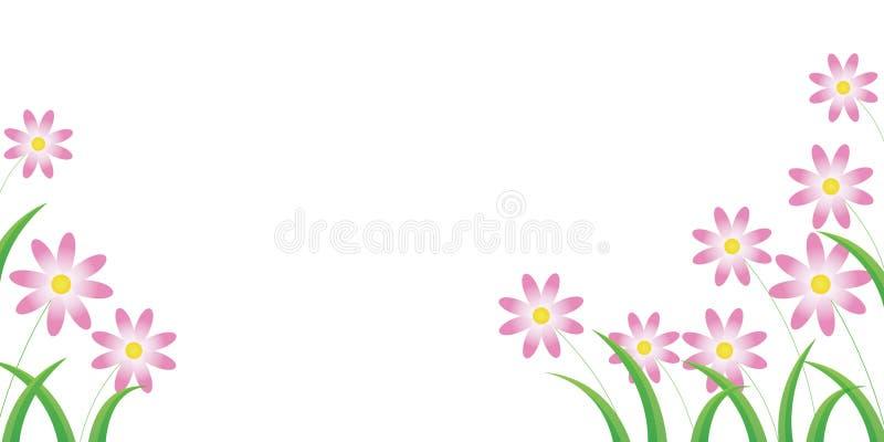 Daisy flower royalty free illustration