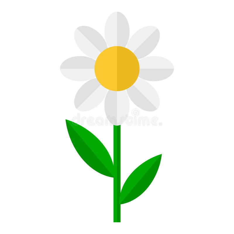 Daisy Flower Flat Icon Isolated on White vector illustration