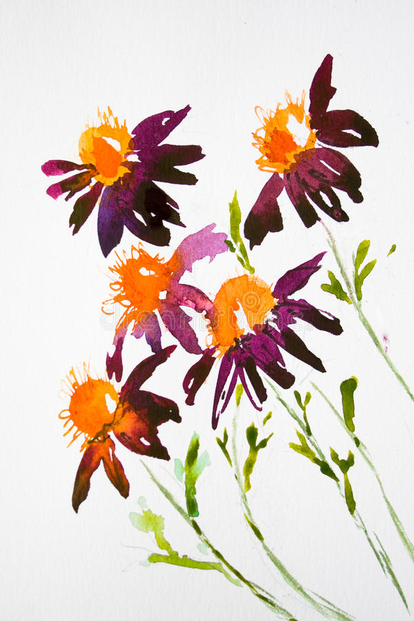 Daisy Flowers On Watercolor Stock Image
