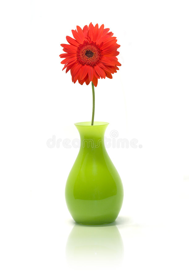 Free Daisy In Green Vase Royalty Free Stock Photography - 2206017