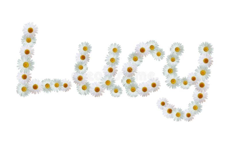Daisy Name Lucy ilustração royalty free