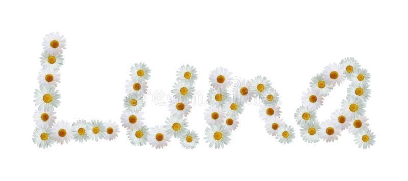 Daisy Name Luna ilustração stock