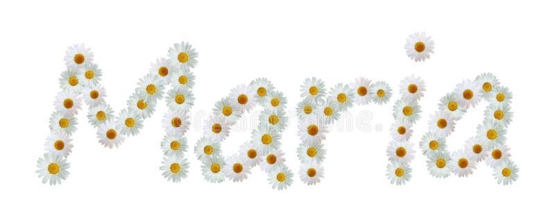 Daisy Name Maria ilustração royalty free