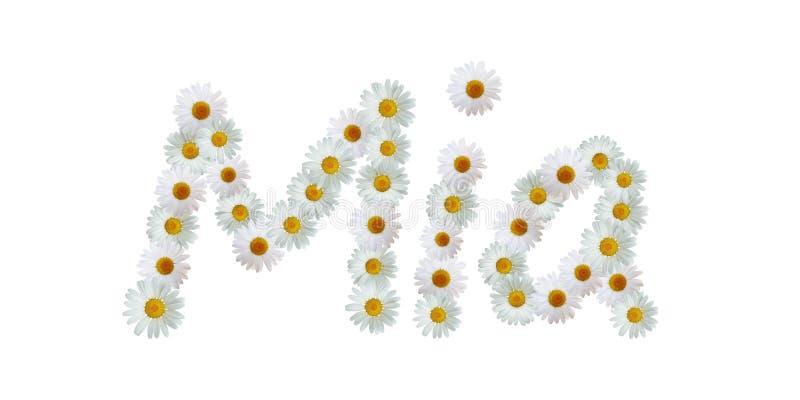 Daisy Name Mia ilustração stock