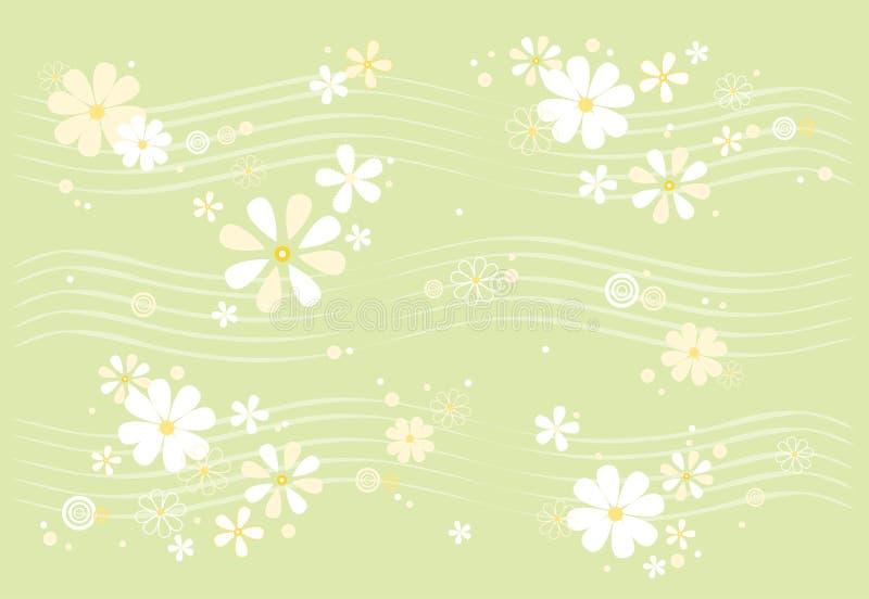 Daisy pattern royalty free stock image