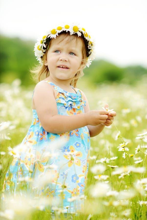 Daisy peutermeisje royalty-vrije stock foto