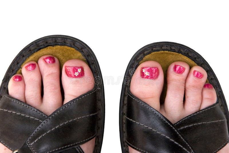 Download Daisy Toes stock photo. Image of health, toes, footcare - 2634838