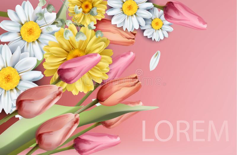 Daisy and tulips flowers bouquet Vector watercolor. Spring Summer backgrounds vector illustration