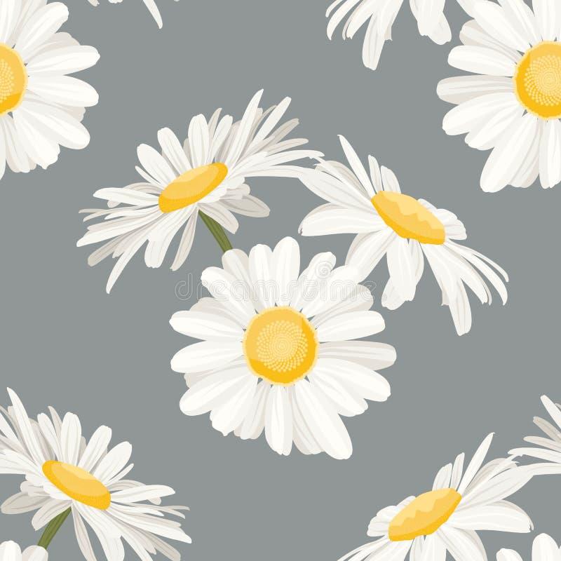Daisy van de de weidelente van het kamillegebied van de zomer het witte gele bloemen naadloze patroon op lichtgrijze achtergrond vector illustratie
