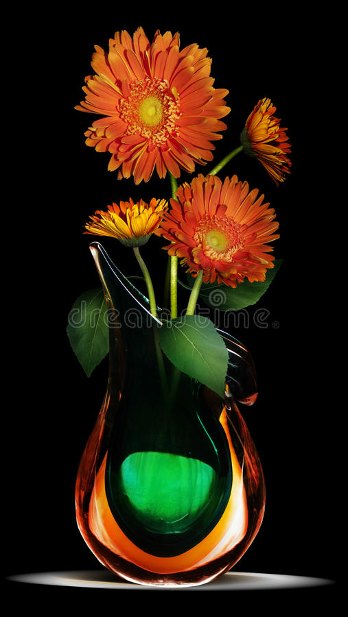 Daisy in vase. A group of orange gerber daisies in a green and orange glass vase on a black background. This is part of a series. See: 2056264 and 20165731 stock photography