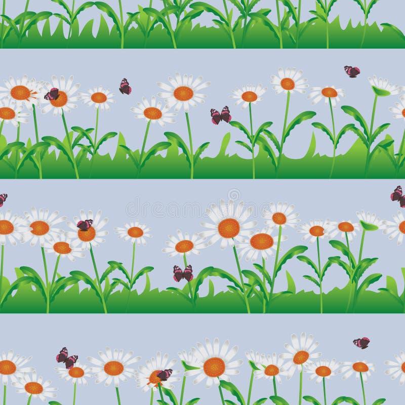 Daisy wit horizontaal naadloos patroon royalty-vrije illustratie