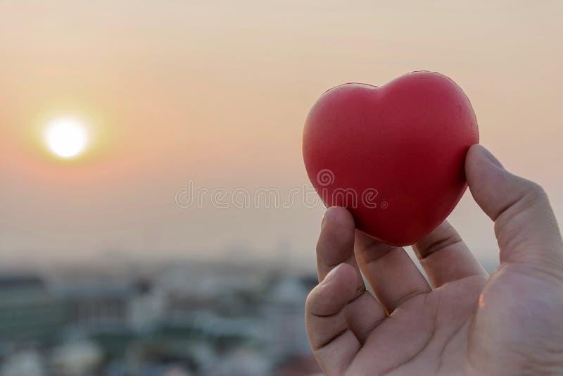 Daje sercu miłość na ręce obrazy royalty free