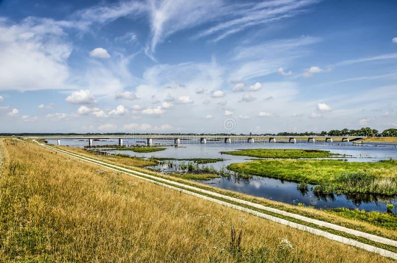 Dajk, ścieżka, most, bagna zdjęcie stock