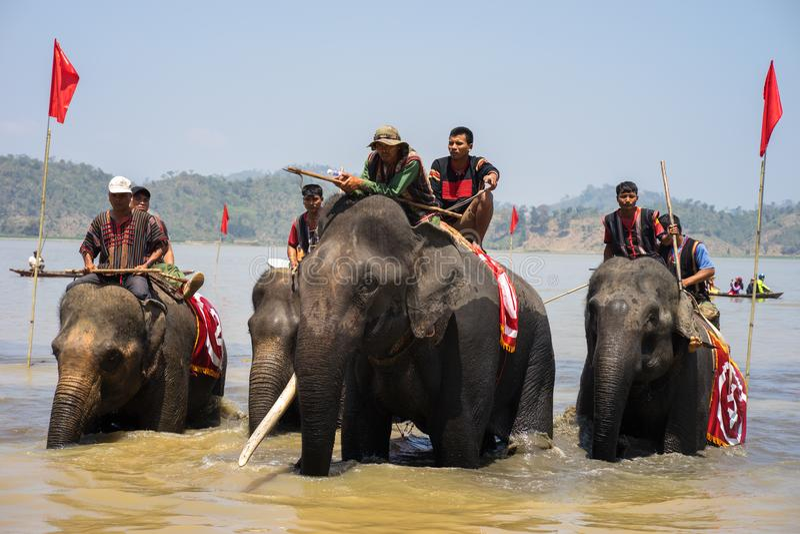 Dak Lak , Vietnam - March 12, 2017 : Elephant racing in water festival by Lak lake in Dak Lak, center highland of Vietnam royalty free stock image