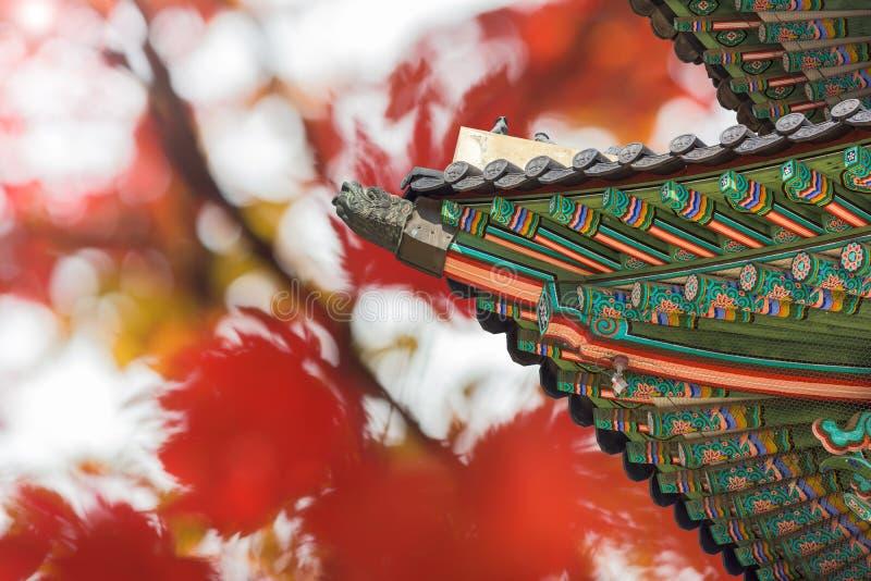 Dak van Gyeongbukgung en de herfstachtergrond in Seoel, Korea royalty-vrije stock afbeelding