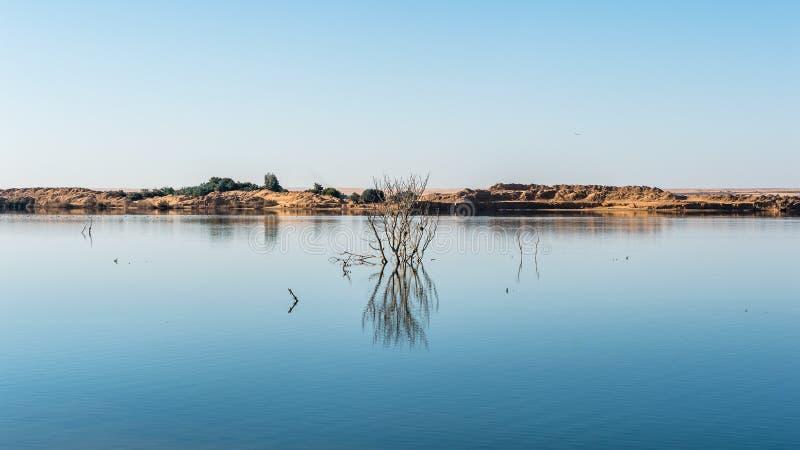 Dakhla Oase, Ägypten stockfotografie