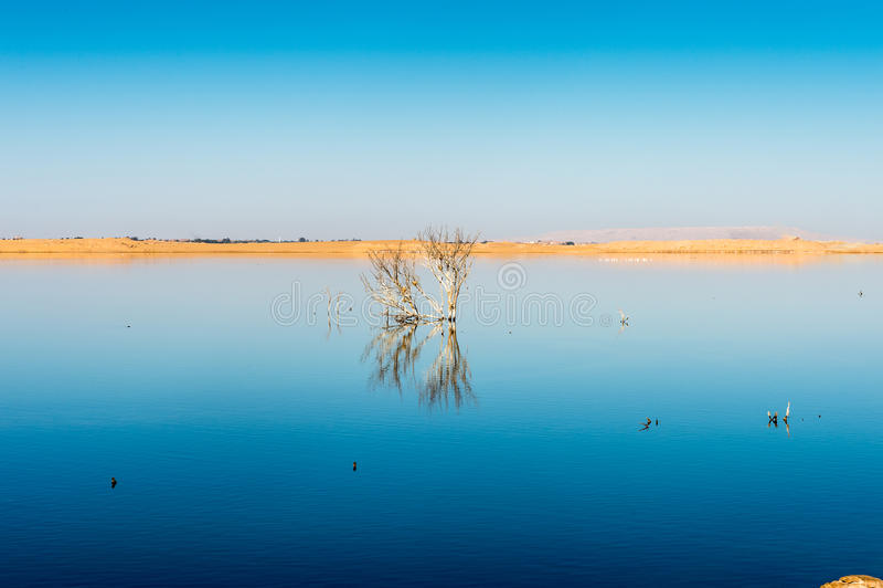 Dakhla Oase, Ägypten lizenzfreie stockfotografie