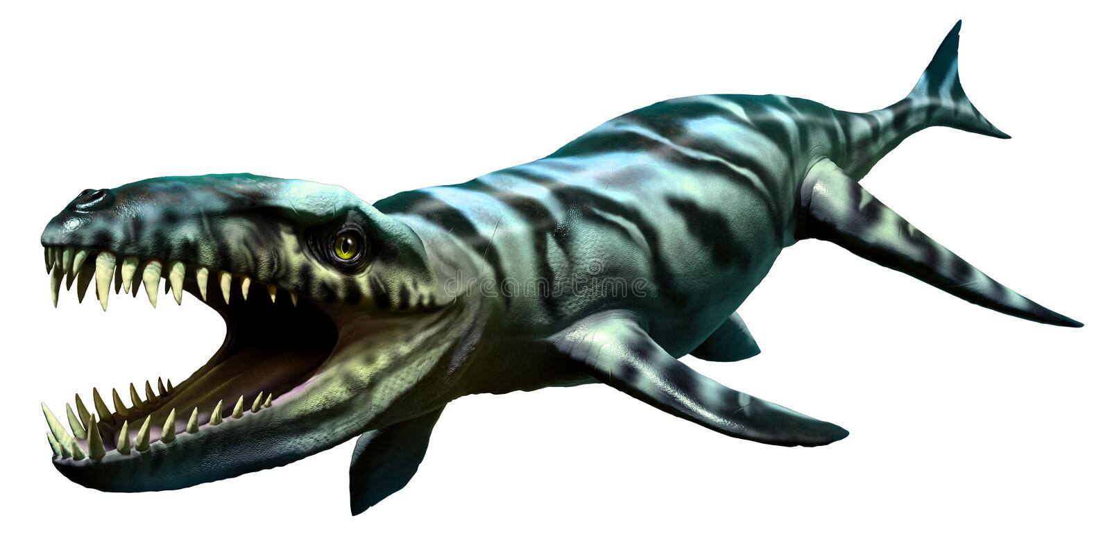 Dakosaurus libre illustration