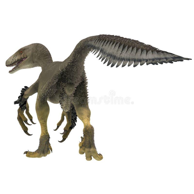 Dakotaraptor恐龙尾巴 皇族释放例证