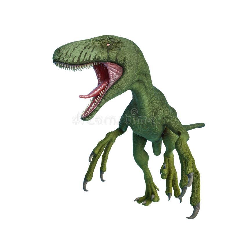 Dakotaraptor быть агрессивный на белой предпосылке иллюстрация вектора