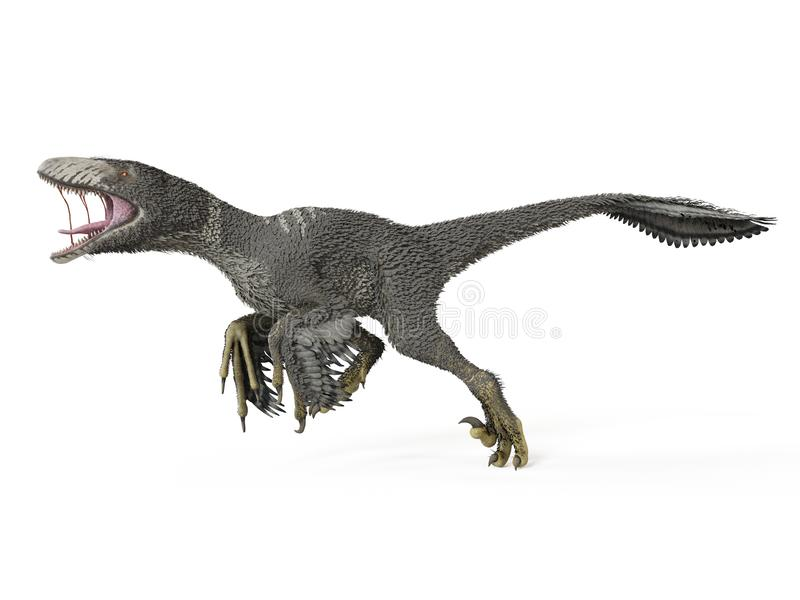 A dakotaraptor stock illustration