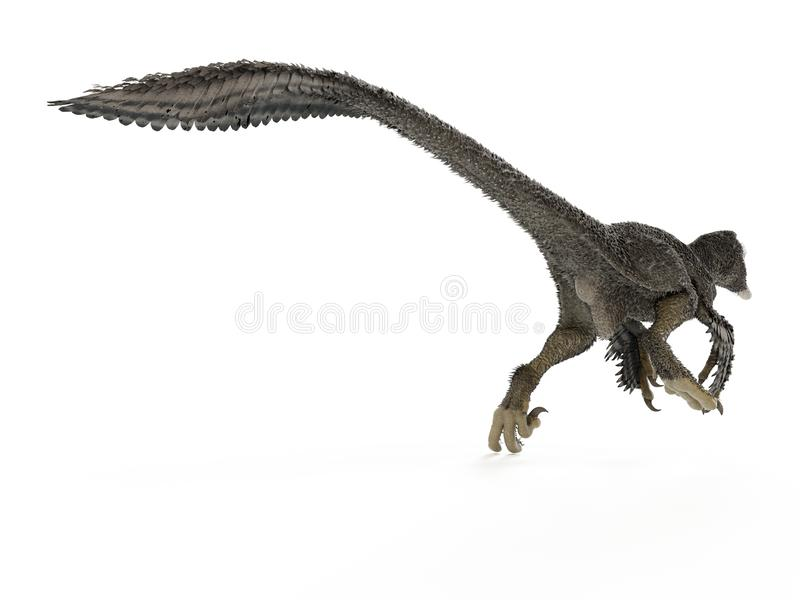 A dakotaraptor royalty free illustration