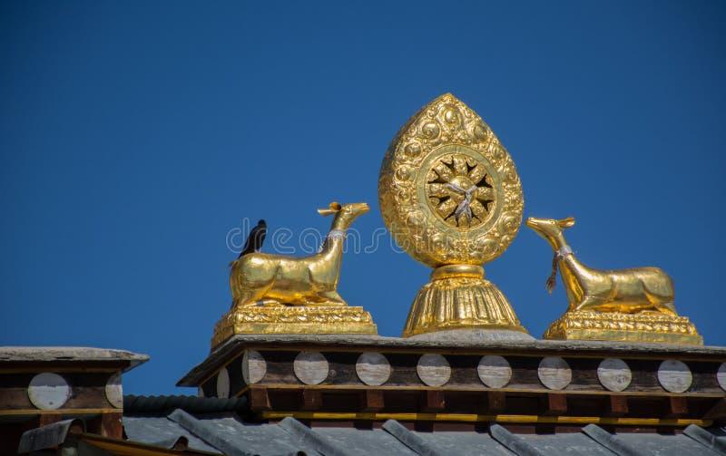 Dakstandbeelden van twee gouden herten en Dharma-wiel in Tibetaanse Tempel stock afbeelding