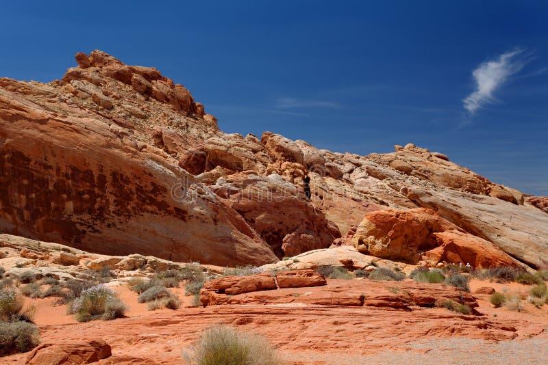 Dal av branddelstatsparken, Nevada, Förenta staterna royaltyfria bilder