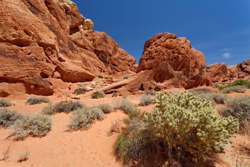 Dal av branddelstatsparken, Nevada, Förenta staterna royaltyfri foto