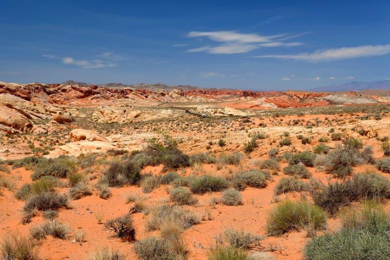 Dal av branddelstatsparken, Nevada, Förenta staterna royaltyfri fotografi