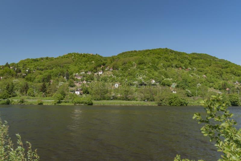 Dal av floden Labe nära den Sebuzin byn royaltyfria bilder