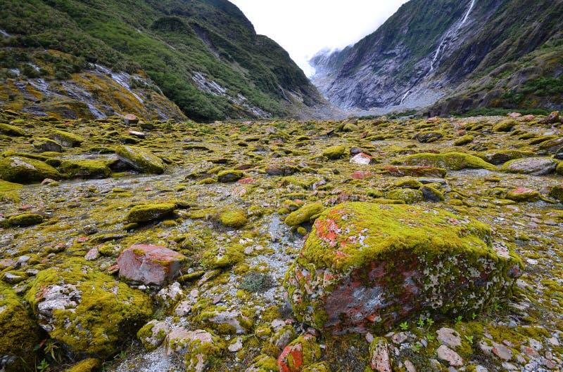 Dal av Franz Josef Glacier royaltyfria foton