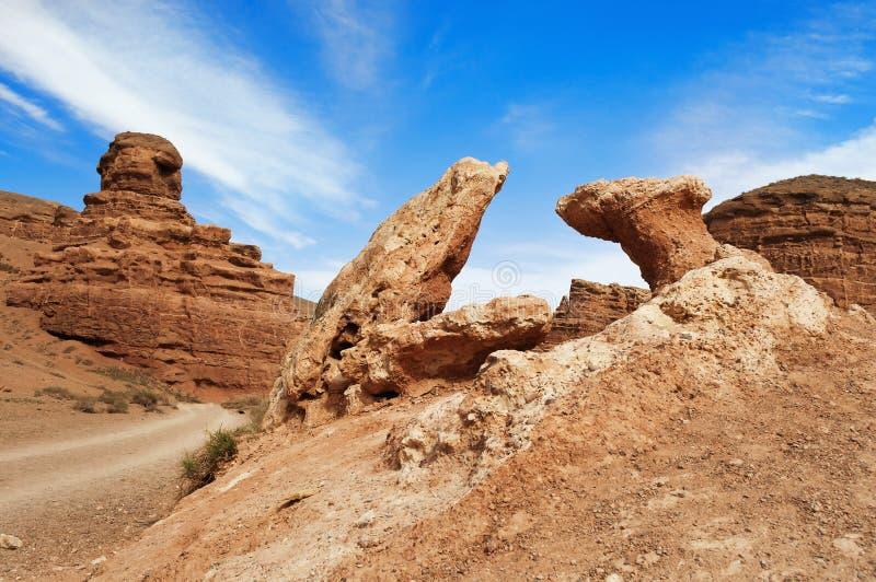 Dal av slottar i Sharyn Canyon arkivbilder
